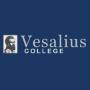 Vesalius College logo